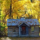Arrowtown Autumn Glory by Peter  Sundstrom
