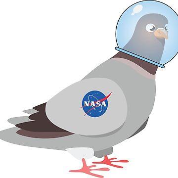 NASA Space Pigeon by shifty303