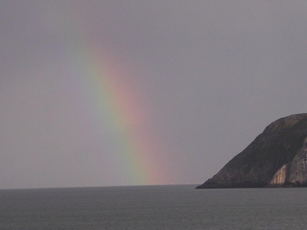 Rainbow  by Debby Allen