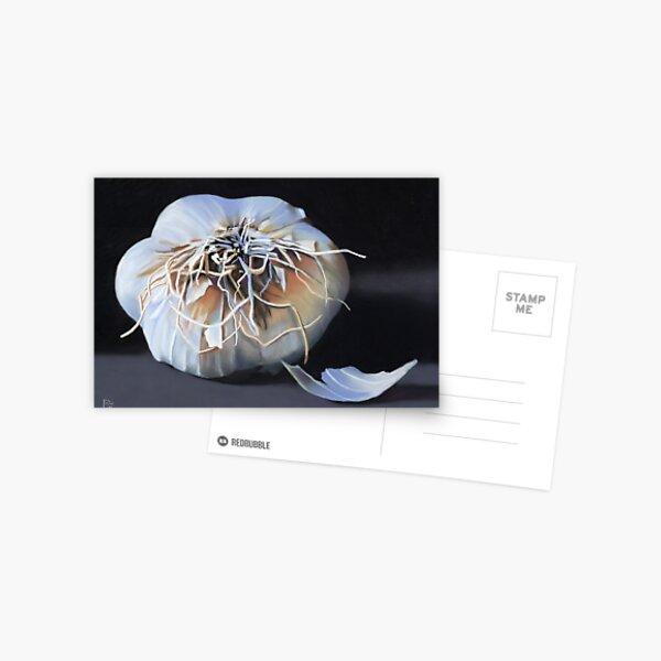 Garlic Bulb fine art painting Postcard