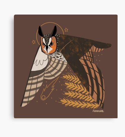 Familiar - Long Eared Owl Canvas Print