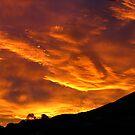 Sky Fire by Peter  Sundstrom