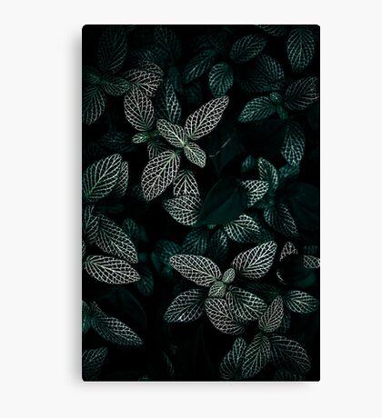 Dark Leaves 3 Canvas Print
