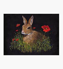 Bunny Rabbit in Grass, Red Poppies, Oil Pastel Art Photographic Print