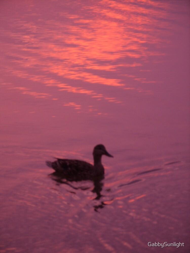 Ducky by GabbySunlight