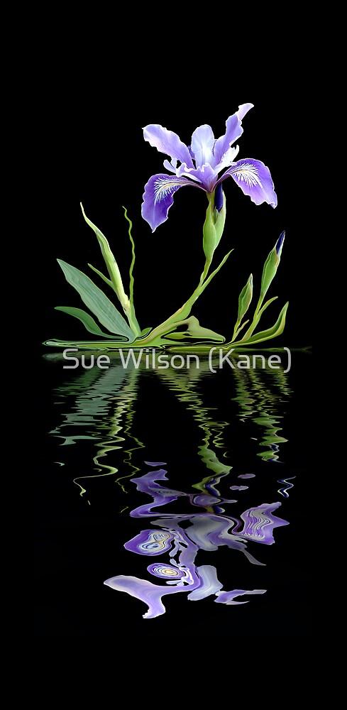 La Fleur by Sue Wilson (Kane)