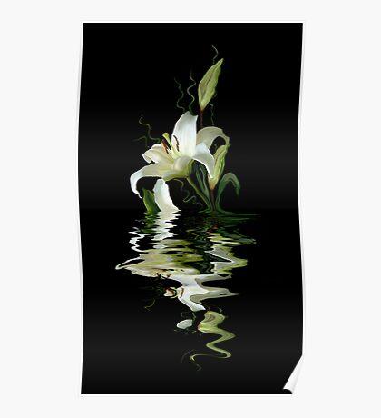 Elegant reflection Poster