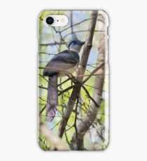Hidding in thicket iPhone Case/Skin