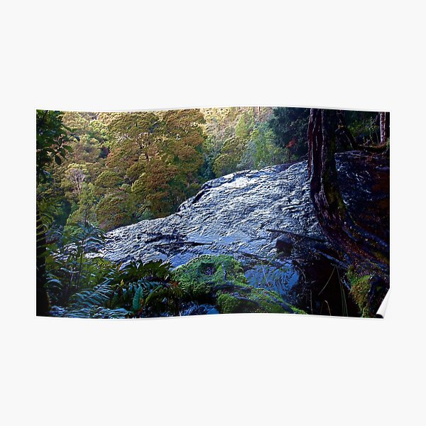 MT FIELD ~ SCENES & SCENERY ~ The Edge by tasmanianartist Poster