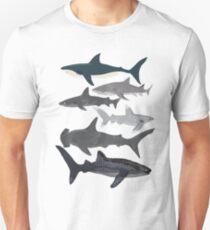 Sharks, illustration, art print ,ocean life,sea life ,animal ,marine biologist ,kids ,boys, gender neutral ,educational ,Andrea Lauren , shark week, shark, great white shark,  Unisex T-Shirt