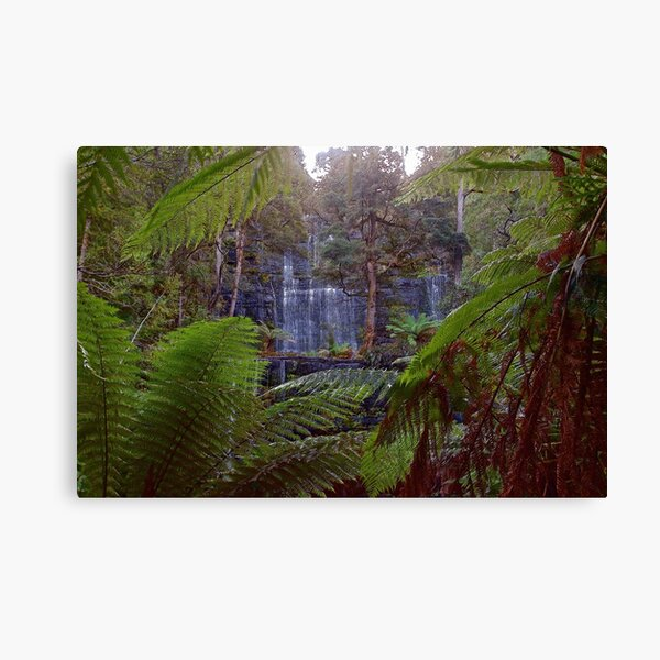 MT FIELD ~ SCENES & SCENERY ~ Russell Falls by tasmanianartist Canvas Print