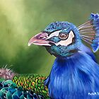 Peacock Profile by Phyllis Beiser
