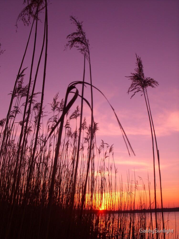 Reed Fantasy by GabbySunlight