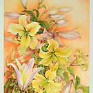 Yellow Lilliums by Carol McLean-Carr