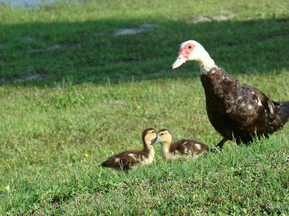 happy family by Ryian