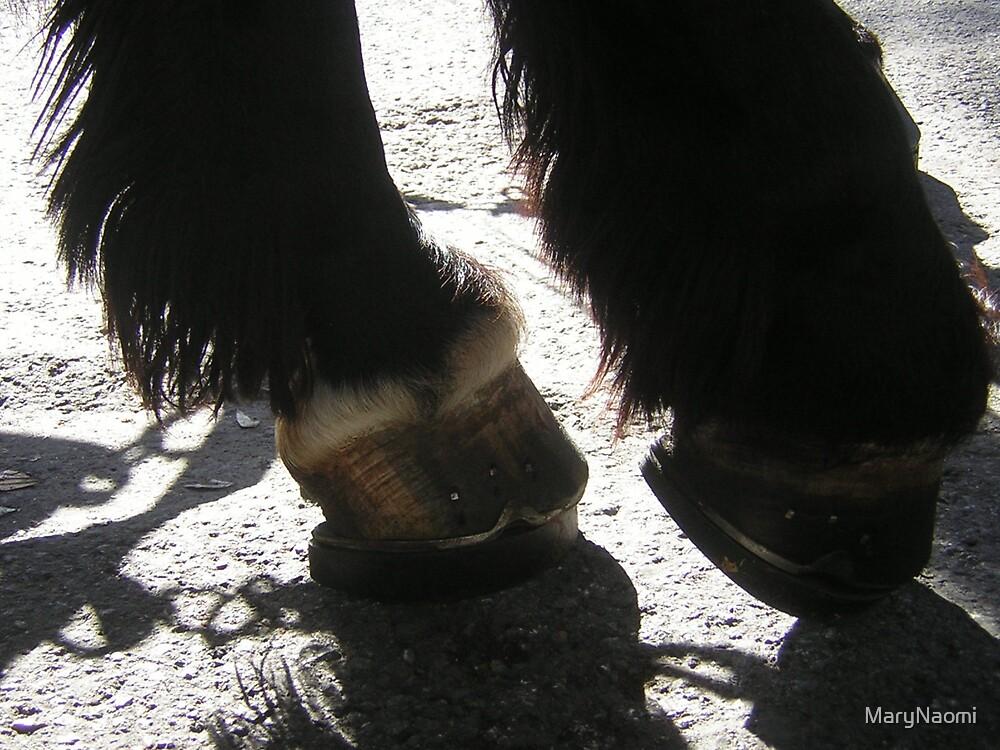 Savannah Horse by MaryNaomi