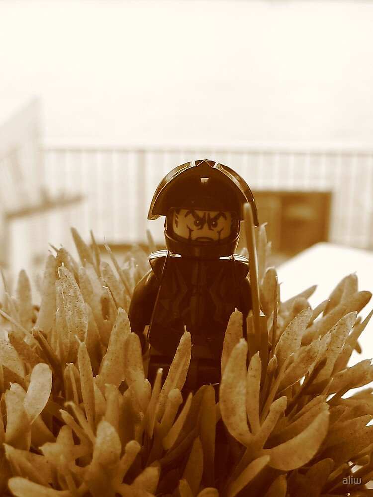 Commander Black by aliw