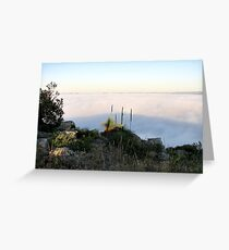 Fog Blanket - Mount Barker Greeting Card