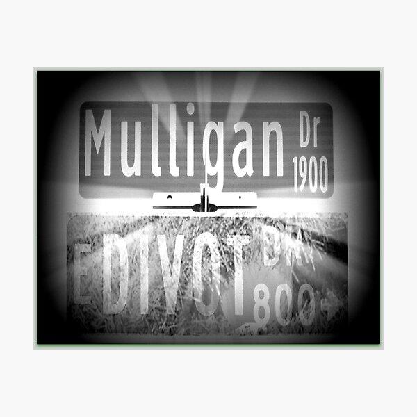 Mulligan Drive / Divot Drive Photographic Print