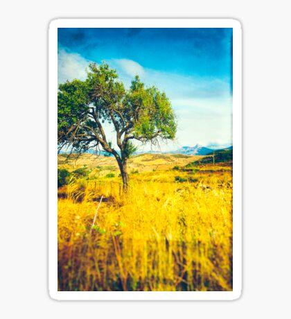 Sicilian Landscape With Tree Sticker