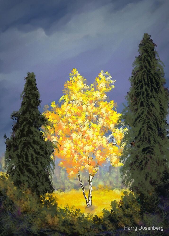 Birch Tree by Harry Dusenberg
