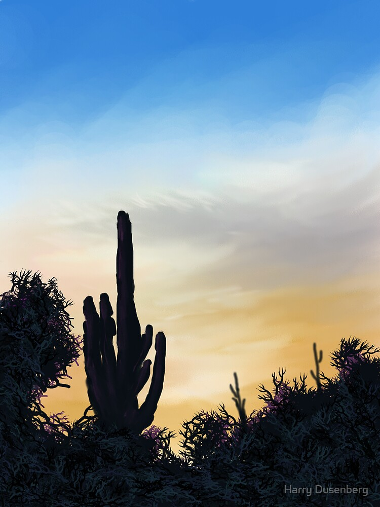 Desert Sunset by Harry Dusenberg