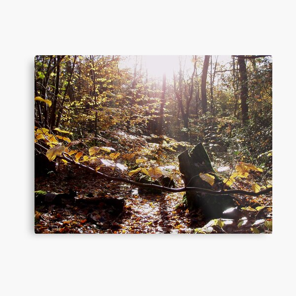 Legend of the Forest Metal Print