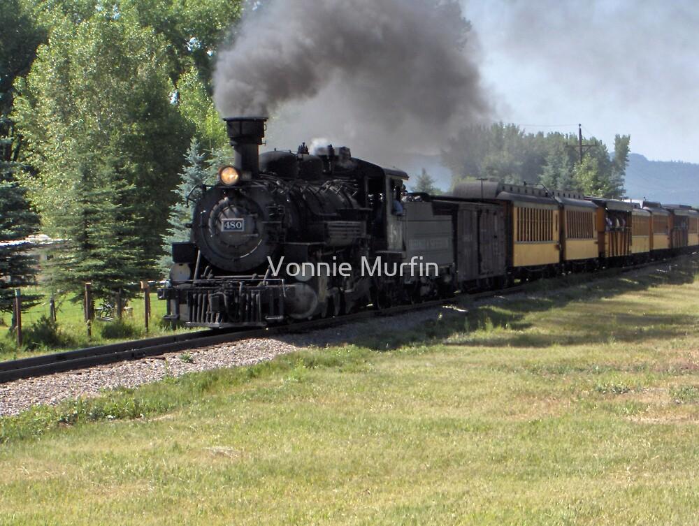 Train by Vonnie Murfin
