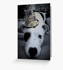 Party Pibble Greeting Card