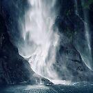 Bowen Falls, New Zealand by Karin Elizabeth