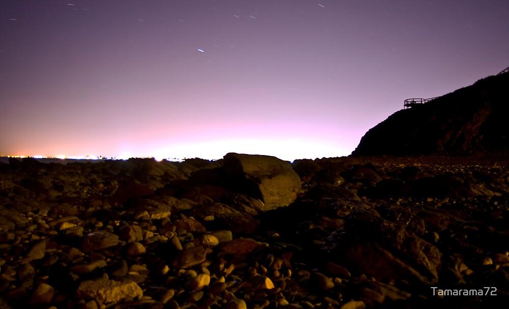 On the Rocks by Tamarama72