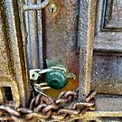 Locked out or Locked in by Sheri Nye