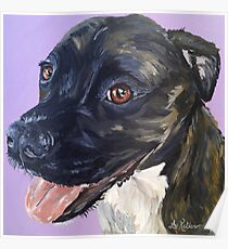 Pit Bull Art by Lee H Keller Poster