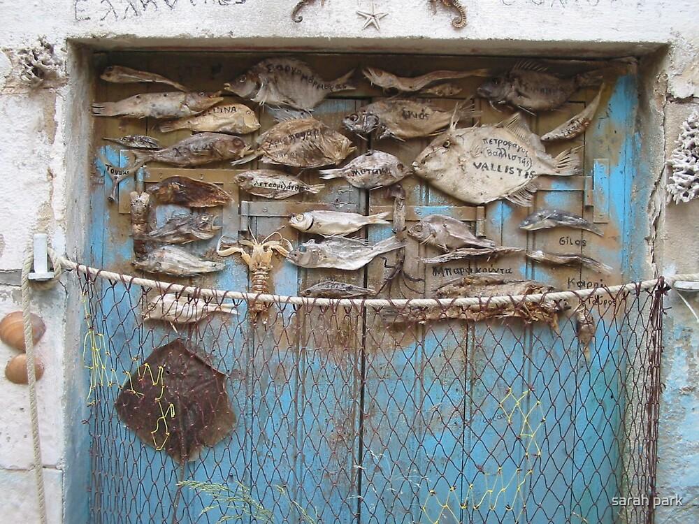 fish door by sarahcro123