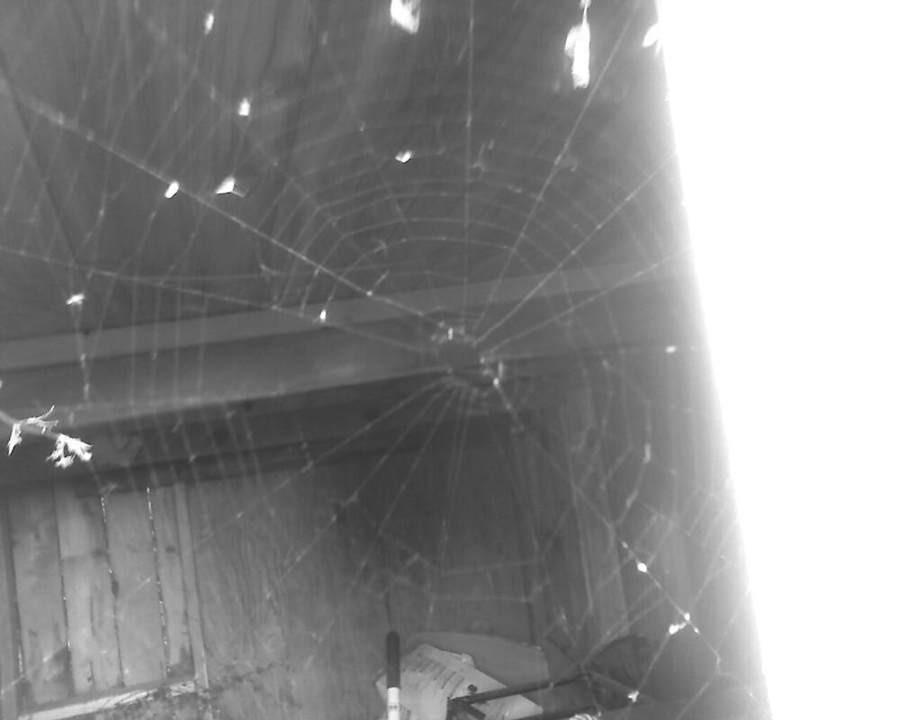 web by lorena