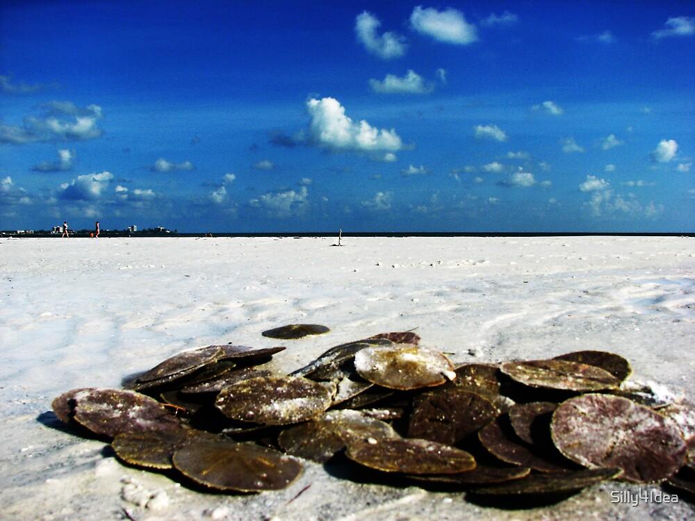 Sand dollars on the Beach 2 by Silly4Idea