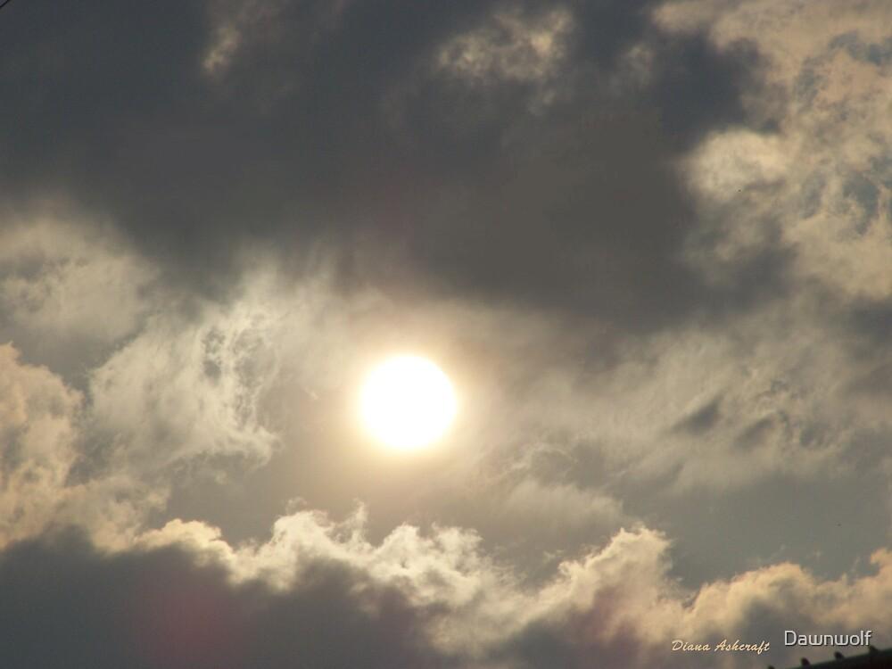 Sunny day  by Dawnwolf