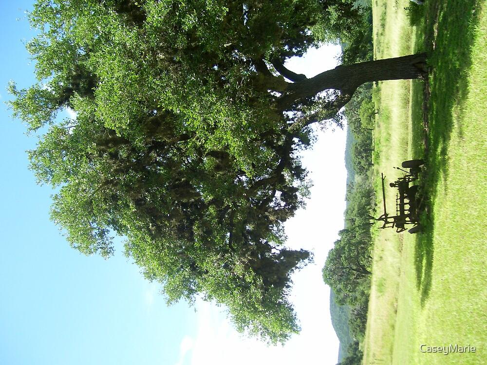tree by CaseyMarie