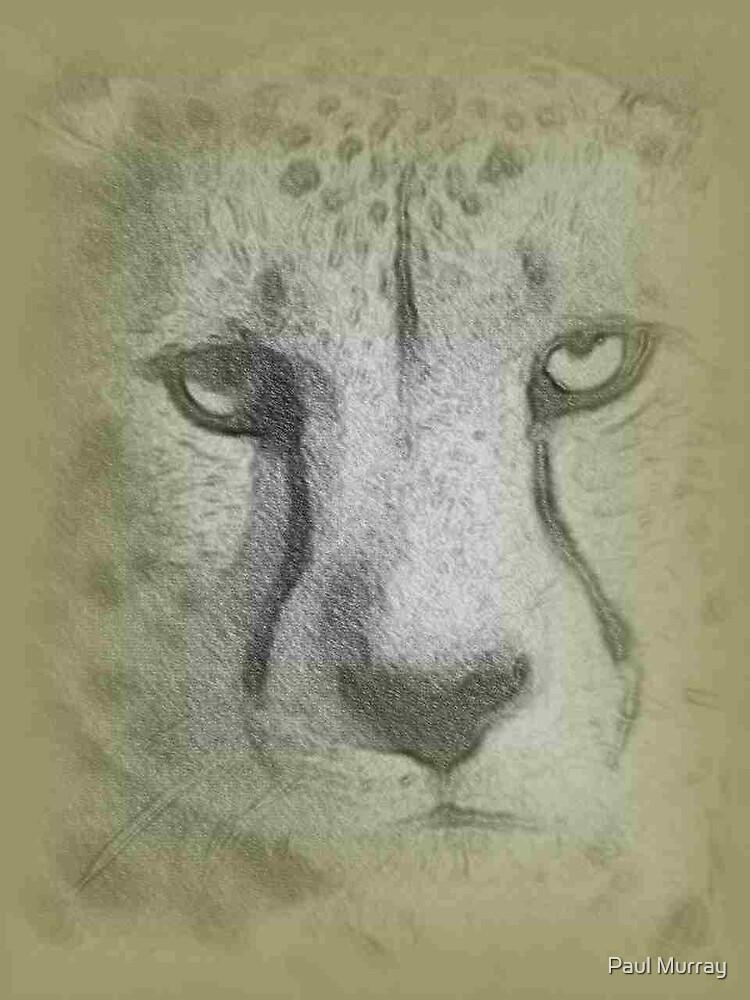 Christmas Cheetah by Paul Murray