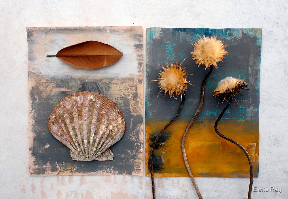 Still life 2 by Elena Ray