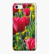primrose and tulips iPhone Case/Skin