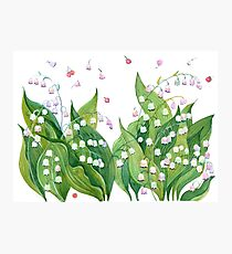 Fresh flowers lily of the valley Photographic Print
