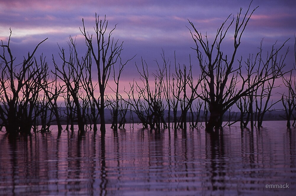 Lake Mokoan, Benalla by emmack