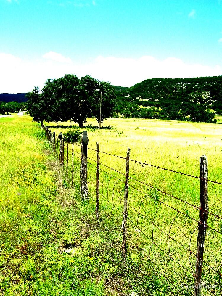 fence by CaseyMarie