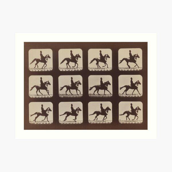Horse Galloping: Eadweard Muybridge, 1879 Art Print