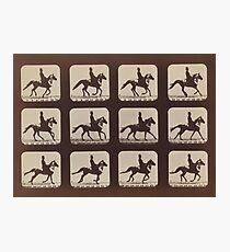 Horse Galloping: Eadweard Muybridge, 1879 Photographic Print