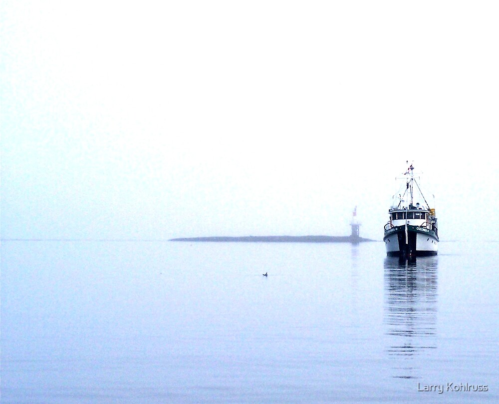 Alone In The Fog 4 - Kohlruss Photography by Larry Kohlruss