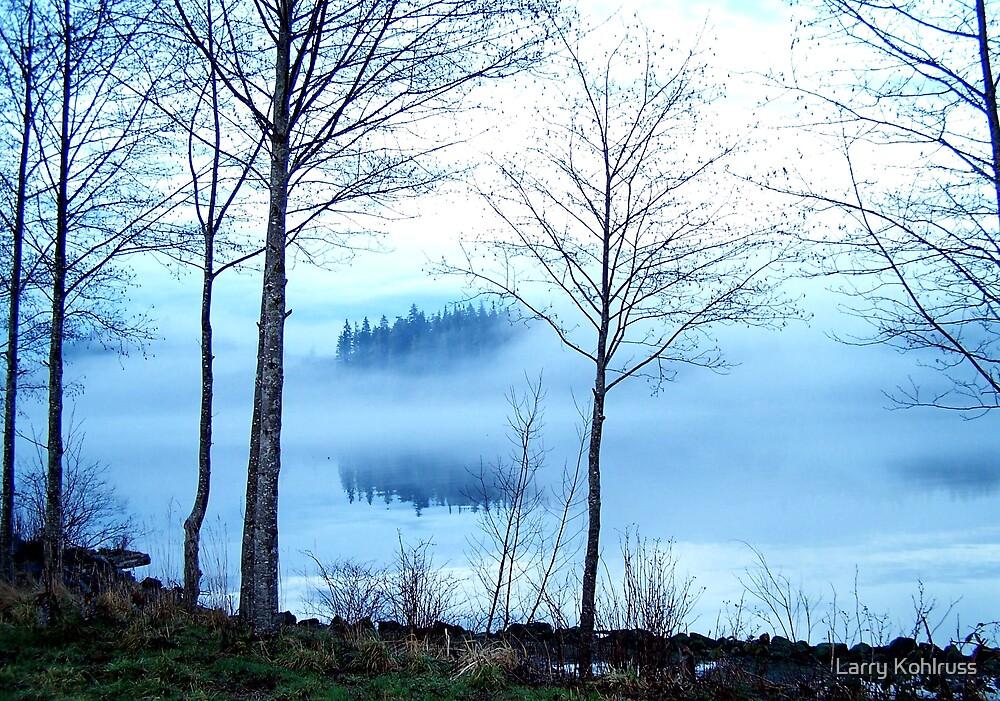 Foggy Morning by Larry Kohlruss