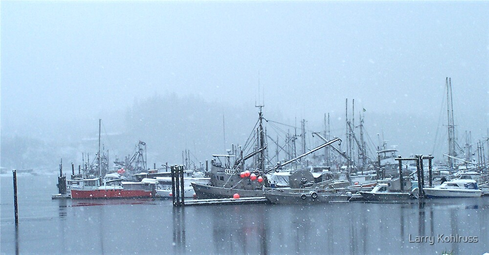 Boats In Winter 1 by Larry Kohlruss