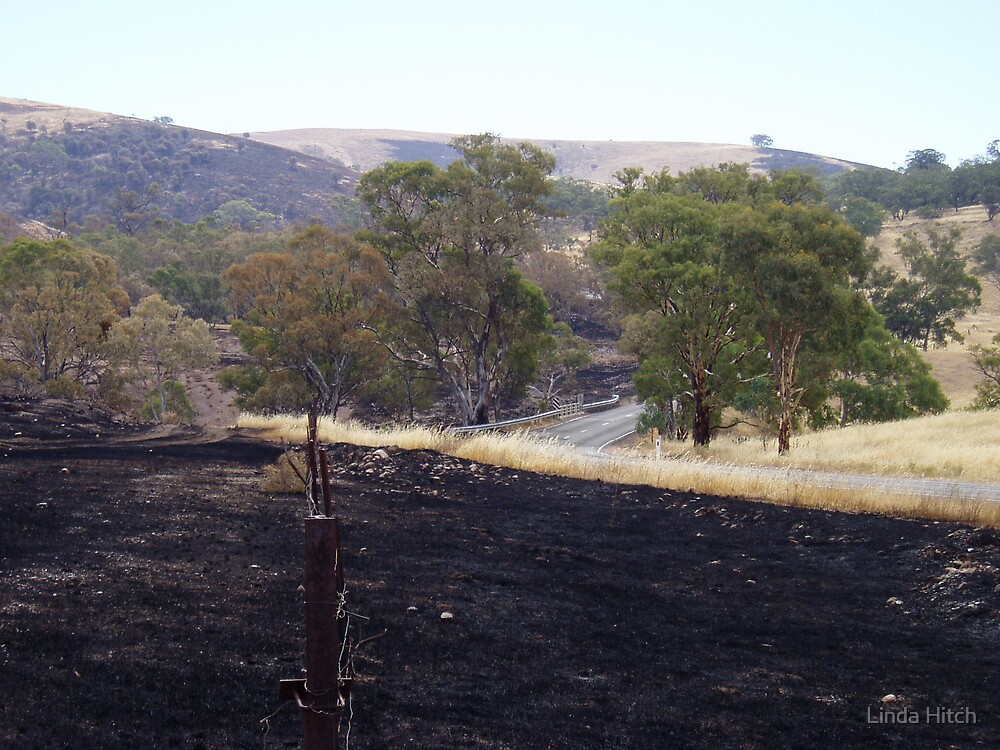 after the fire frount by Linda Hitch